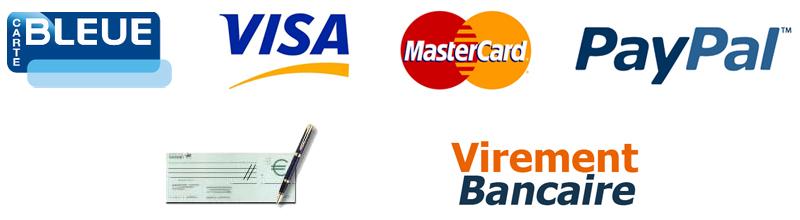 comment payer par virement bancaire
